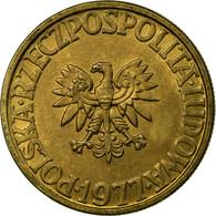Monnaie, Pologne, 5 Zlotych, 1977, Warsaw, TTB, Laiton, KM:81.1 - Pologne