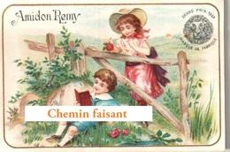 Chromo AMIDON REMY - Enfants Décor Champêtre - Scans Recto-verso - Other