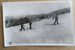 CHAMP DU FEU - Les Vosges En Hiver - Skieurs, Sport D'hiver ( 67 Bas Rhin ) - Schiltigheim