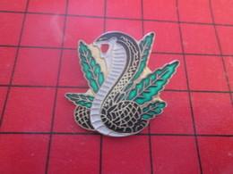 811j Pins Pin's  / Rare & Belle Qualité / THEME ANIMAUX : SERPENT NAJA DEVANT FEUILLE DE CANNABIS - Animaux