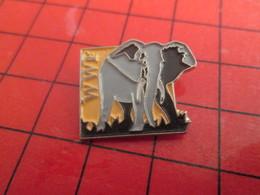 812c Pins Pin's  / Rare & Belle Qualité / THEME ANIMAUX : WWF WORLD WILDLIFE FUND ELEPHANT - Animaux