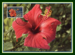 Nederlandse Antillen Maxicard Hibiskus Flower 1956 Carte Maximum Fleur Antilles - Antilles