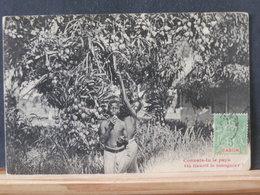 A8863    CP  GABON  VERSO BLANCO - Gabon (1886-1936)
