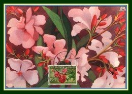 Nederlandse Antillen Maxicard Oleandro Flower 1956 Carte Maximum Fleur Antilles - Antillen