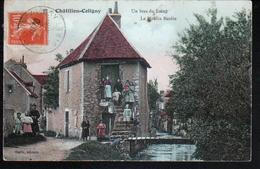 45, Chatillon Coligny, Un Bras Du Loing, Le Moulin Bardin - Chatillon Coligny