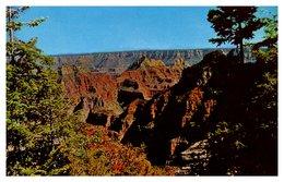 Etats Unis - Grand Canyon - Zonder Classificatie