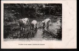 45, Chatillon Coligny, La Peche En Eau Trouble - Chatillon Coligny