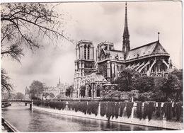 Paris - Cathédrale Notre-Dame - Facade Sud - (1951) - Notre-Dame De Paris