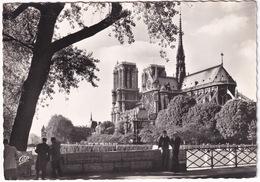 Paris - Emergeant Des Jardins De L'Archevèché, La Cathédrale Notre-Dame - Notre-Dame De Paris
