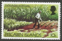Pitcairn Islands. 1977 Definitives. 10c MH. SG 179 - Stamps
