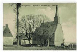 Hoegaarden  Hougaerde  Chapelle De Hauthem-Ste-Catherine - Hoegaarden