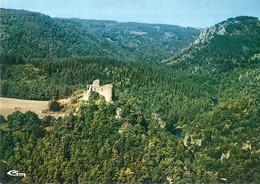 CPA CHATEAU DE LA GARDE (lozère) - Castillos