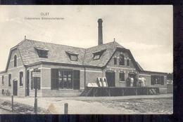 Olst - Cooperatieve Stoomzuivelfabriek - 1916 - Other