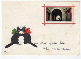 Une Grosse Bise De Chateaubriant .  / René / Chats - Châteaubriant