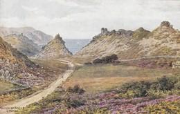 Postcard Valley Of Rocks Lynton ARQ Quinton [ Salmon ] My Ref  B13229 - Lynmouth & Lynton