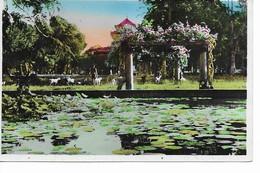SUD-VIETNAM   Saigon  Le Jardin Botanique Au Fond, Le Musée. - Viêt-Nam