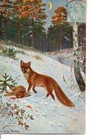 Illustrée Signée Fritz Müller-Landeck : Le Renard Et Le Lapin Dans La Neige - Autres