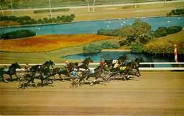 Etats-Unis - Hippisme - Hippodrome - Champ De Courses - Chevaux - California ? - Hollywood Park - Inglewood - Bon état - Etats-Unis