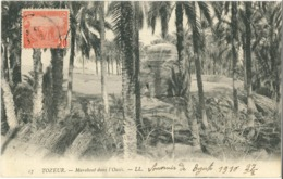 Cpa TOZEUR 1910 - Marabout Dans L'Oasis N° 27 LL - Túnez