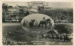Royaume-Uni - Angleterre - Yorkshire - Hippisme - Hippodrome - Champ De Courses - Chevaux - Doncaster - At The Races - Angleterre