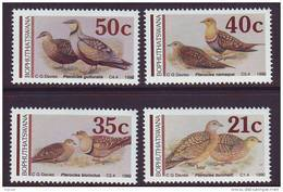 D101225 Bophuthatswana 1990 South Africa PIGEONS DOVES SANDGROUSE Birds MNH Set - Afrique Du Sud Afrika RSA Sudafrika - Bophuthatswana
