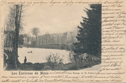 CPA - Belgique - Mons - Les étangs De St. Denis - Mons