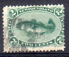 Sello Nº 21 Newfoundland - Newfoundland