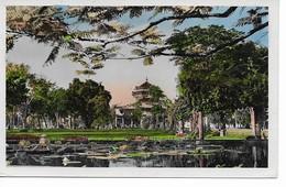 SUD-VIETNAM   Saigon  Jardin Botanique Vu Du Musée. - Viêt-Nam