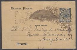 Brazil -Stationary. 1900 (24 Feb). Local 50rs Stta Card Addressed To Monyolinho, Fazenda Felicissima. VF. - Unclassified