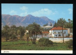 CPM Neuve Palestine JERICHO View To Mt. Of Temptation - Palestine