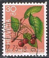 Switzerland SG J242 1973 Pro Juventute 30c+10c Good/fine Used [17/15712/7D] - Pro Juventute