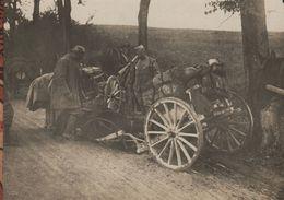 Photo  Guerre 1914 1918   Accident De Cheval Charriot  Attelage - 1914-18