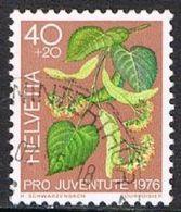 Switzerland SG J255 1976 Pro Juventute 40c+20c Good/fine Used [17/15707/7D] - Pro Juventute