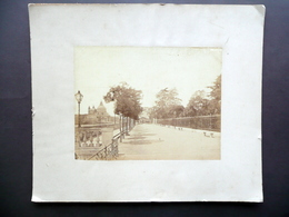 Grande Fotografia Venezia Giudecca Viale Fine Ottocento - Foto