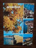 L11/112 Arcachon. Multivues - Arcachon