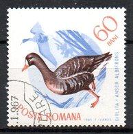 ROUMANIE. N°2150 Oblitéré De 1965. Oie Rieuse. - Oies