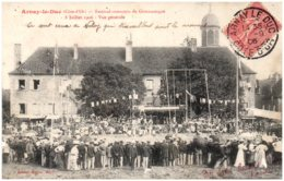 21 ARNAY-le-DUC - AFestival-concours De Gymnastique - 8 Juillet 1906 - Vue Générale - Arnay Le Duc