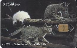 CUBA - GATO DOMESTICO - CAT - Cuba
