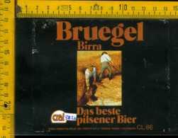 Etichetta Birra Bruegel Pilsener Bier - Poretti-Varese - Birra