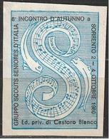 Gruppo Scouts Seniores D'Italia 8° Incontro A Sorrento 2-4 Ottobre 1980 - Scoutismo