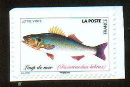 France 2019 - Loup De Mer / Bar / Bass Fish / Dicentrarchus Labrax - MNH - Fische
