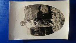 PHOTO DE JEUNE FILLE SUR LES ROCHERS BORD DE MER ALGERIE - Kinderen