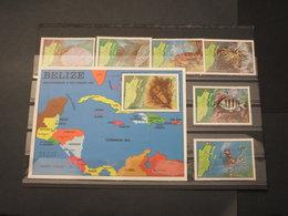 BELIZE - 1982 FAUNA MARINA 6 VALORI + BF - NUOVI(++) - Belize (1973-...)
