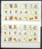 Saudi Arabia 1990 Flowers 2x Sheetlets MUH - Saudi Arabia
