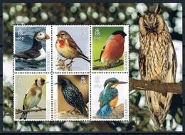 Bloc Sheet Oiseaux Birds Neuf MNH ** Guernsey 2019 - Pájaros