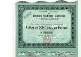13-PRODUITS CHIMIQUES ALUMINEUX. SEPTEMES Les VALLONS. - Shareholdings