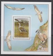 D101006 Transkei 1991 South Africa Birds EAGLES M-s MNH - Afrique Du Sud Afrika RSA Sudafrika - Transkei