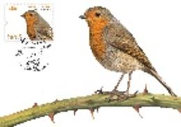 Portugal & Maxi Card, Europa CEPT, National Birds, Pisco-de-Peito-Ruivo, Erithacus Rubecula, Lisboa 2019 (8417) - Cartoline Maximum