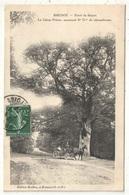 91 - BRUNOY - Forêt De Sénart - Le Chêne Prieur - Edition Baillon - 1909 - Brunoy