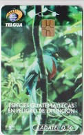 #09 - GUATEMALA - BIRD - Guatemala